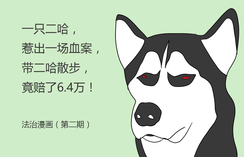 【法治漫画】带哈士奇出门散步,结果赔了6.4万!