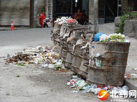 新生路垃圾堆放点真邋遢图片