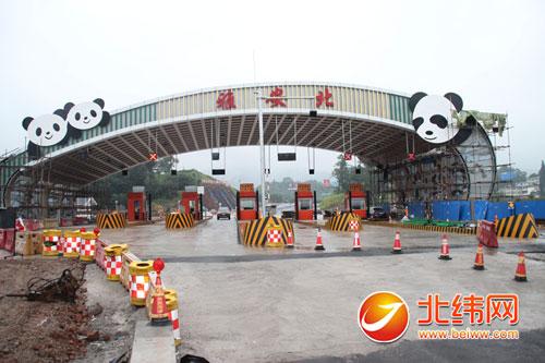 """三只可爱的""""熊猫""""攀爬在收费站的门栏上,配上一小块绿色,好似国宝们在"""