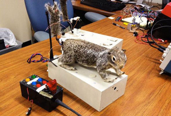 松鼠版脉冲金属探测器电路图