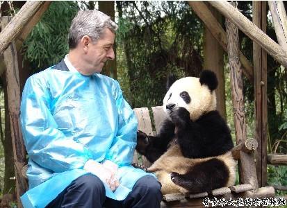 在大熊猫幼儿园,由于国庆节游人非常多