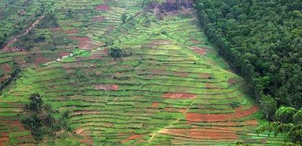 森林资源二类调查通过验收图片