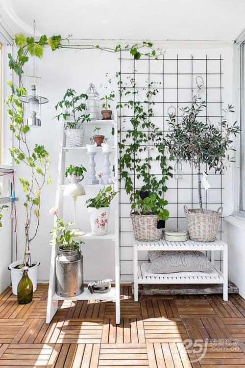 绿色植物,是打造小清新阳台必不可少的点缀物