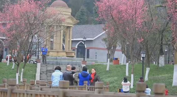 市民踏青赏花 感受春的气息