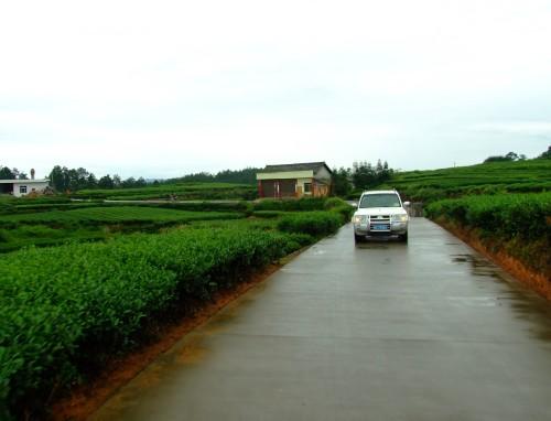 农村公路养护的名山范本