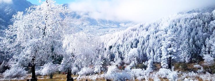 磽磧飄雪(xue)美景(jing)如畫